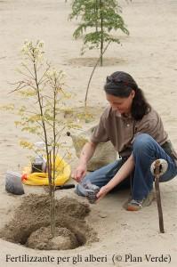 Moringapflanzung-Plan-Verde-e.V.