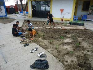 Bodenbeaarbeitung-Plan-Verde-e.V.