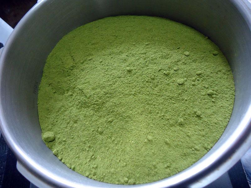 Moringa-Pulver-Plan-Verde